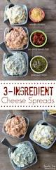 3 ingredient cheese spreads recipe awesome all and sun