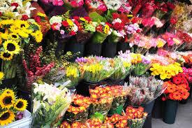 flowers in bulk bulk flowers capnhat24h info capnhat24h info
