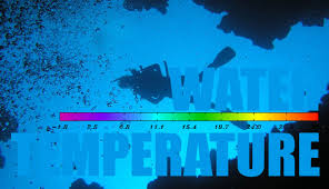 What Is Comfortable Water Temp For Swimming Wetsuit Water Temperature Chart And Guide For Divers 360guide