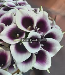 picasso calla aliexpress buy purple picasso calla real touch flowers
