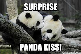 Meme Surprise - panda kiss