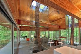 10 houses built around trees mental floss