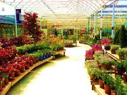 Marin Art And Garden Center Armstrong Garden Centers Santa Monica Los Angeles Ca прилавок
