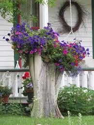 19 blazing tree stump planter ideas that u0027ll impress you tree