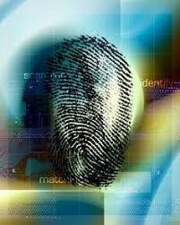 forensics images google search forensics pinterest