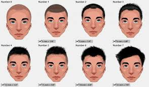 differnt styles to cut hair different haircut numbers and hair clipper sizes learn how to
