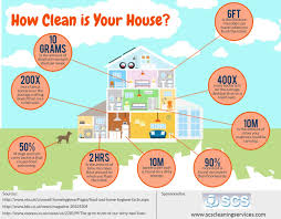 Home Clean How Clean Is Your House Visual Ly