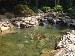 Aquascapes Of Ct Ny Ecosystem Pond Contractor Design U0026 Maintenance Plainview