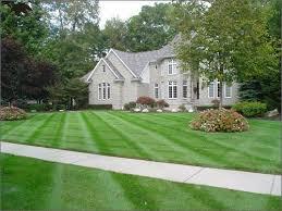 Backyard Grass Ideas The 25 Best Lawn Care Schedule Ideas On Pinterest Lawn Care