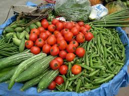 can ferrets eat vegetables and fruit u2013 my ferret pet