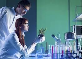 Environmental Scientists And Specialists Bureau Bureau Of Labor Statistics