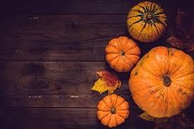 pumpkin photos graphics fonts themes templates creative market