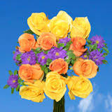 Different Color Roses Dozen Roses Global Rose