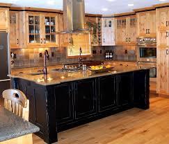 best finish for kitchen cabinets 11 elegant best finish for kitchen cabinets harmony house blog