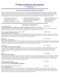 Sample Resume For Mid Level Position Competitivite Des Dissertation Firmes Internationales Strategy