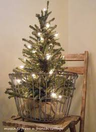 a small tree in a big basket simple lighted tree set in a