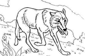 coloring pages elegant hunting coloring pages 200 bear fishing