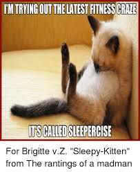 Sleepy Kitty Meme - 25 best memes about sleepy kitten sleepy kitten memes