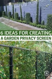 Garden Privacy Ideas 6 Ideas For Creating A Garden Privacy Screen Pin Jpg