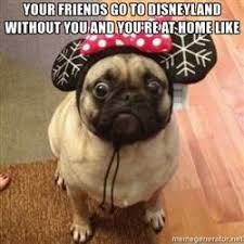 Disneyland Meme - cdn meme am cache instances folder57 250x250 72253057 disney pug