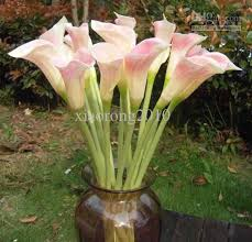 Calla Flower 2017 Real Touch Large Size Calla Lily Flowers Artificial Callas