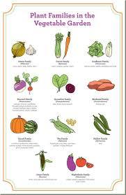 vegetable garden rotation planner u2013 izvipi com