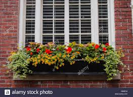 a window box of flowers in historic boston massachusetts stock
