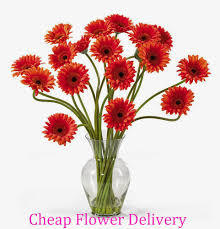 cheap flowers delivered cheap flowers delivered
