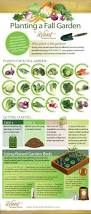 edible gardening for beginners how to get started growing your
