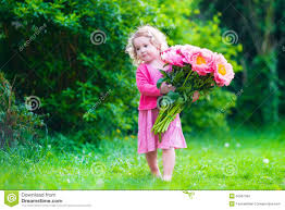 little with peony flowers in the garden stock photo image