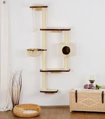 cat tree on the wall dandy u0027s pet