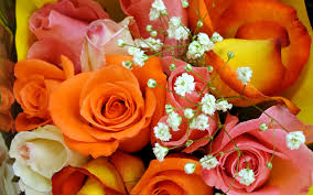 Colorful Roses Colorful Rose Bouquet Widescreen Wallpapers