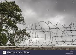 Wire Photo Display Auckland New Zealand March 5 2017 Nasty Barbed Wire Fence On