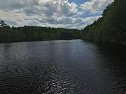 Eels Lake Cottage Rental by 43 51c5248d11017ea2f73b322909e783f6 Jpg