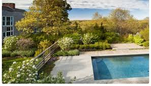 the authentic garden naturalistic and contemporary landscape