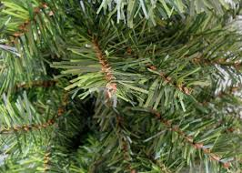 unlit artificial christmas trees 6 canadian pine artificial christmas tree unlit