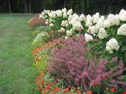 Perennial Garden Design Ideas Perennial Planning And Garden Design Perennial Garden Design For