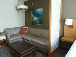 slide out sofa bed seating area with pull out sofa bed sectional couch picture of