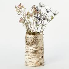 Birch Bark Vases Birch Bark Cylinder Terrain