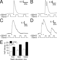 modulation of gq protein coupled inositol trisphosphate and ca2