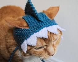 Halloween Costume Cats Frog Costume Cats Hand Knit Cat Hat Cat Halloween