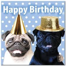 fun pugs u2013 pug party card u2013 fun pugs