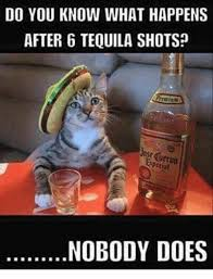 Shots Meme - do you know what happens after 6 tequila shots arrmiam nobody