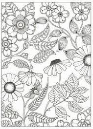 secret garden colouring book postcards secret garden 20 postcards by johanna basford johanna basford