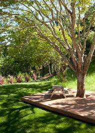 Best Trees For Backyard by Best 25 Deck Around Trees Ideas Only On Pinterest Tree Deck