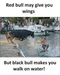 Water Meme - red bull may give you wings but black bull will make you walk on