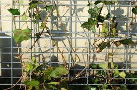 Custom Trellis Panels Gsr Architectural Group Custom Architectural Solutions The