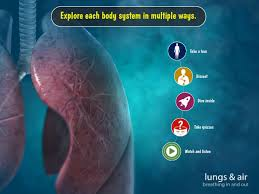 App For Anatomy And Physiology My Incredible Body For Kids Android Apps On Google Play