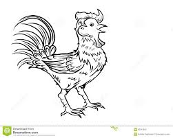 rooster outline drawing black and white stock vector image 83347642