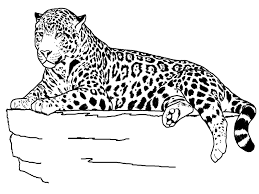 animal coloring pages google jaguar